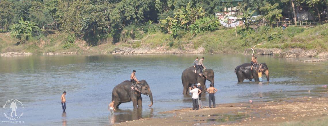 chitwan-nepal-wycieczka