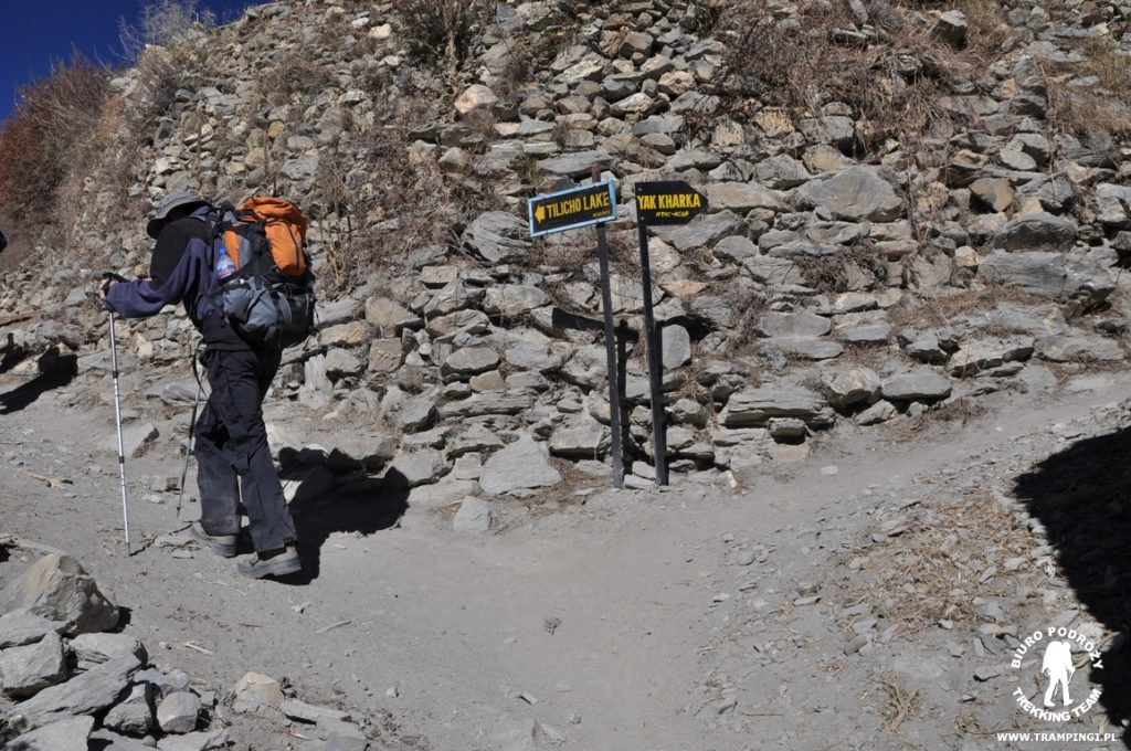 tilicho-trekking06