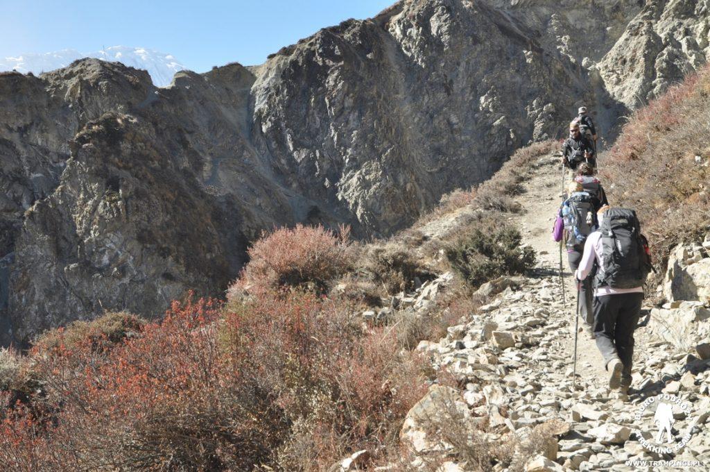 tilicho-trekking08