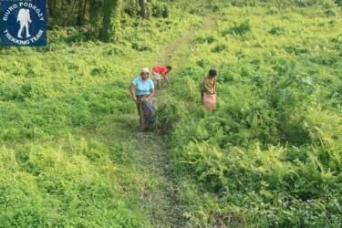 w parku Chitwan