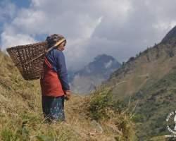 kobieta-praca-na-polu