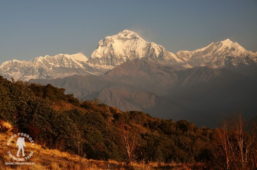 Dhaulagiri i Tukuche widok z Poon Hill