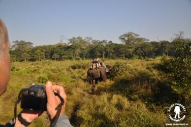 Bezkrwawe safari w Parku Chitwan, Nepal